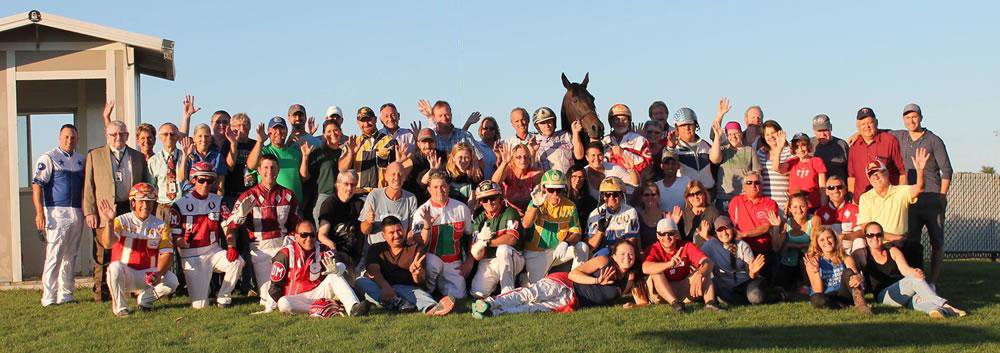 Minnesota Harness Team